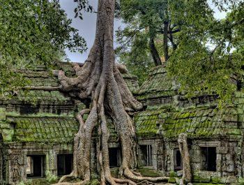 Легендарные здания, о которых все забыли